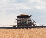 harvesting drought crops.gleaner
