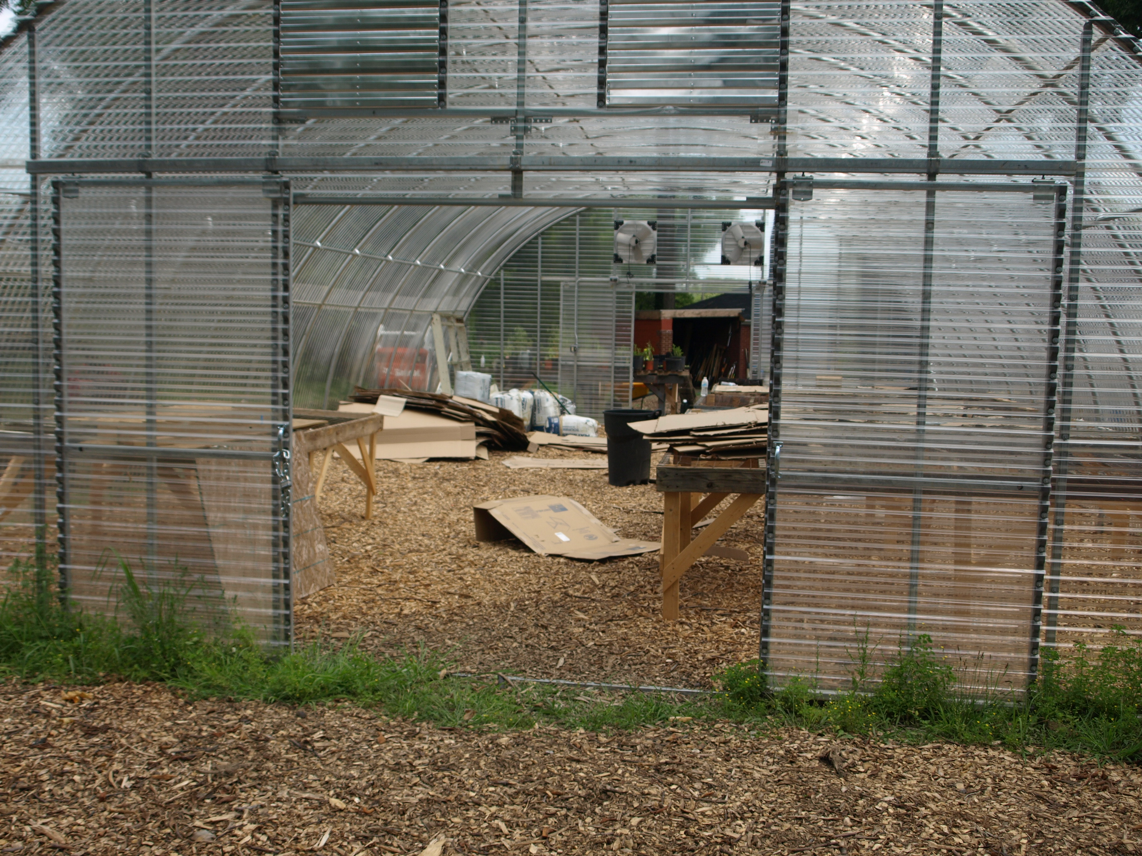 Youngstown urban farming