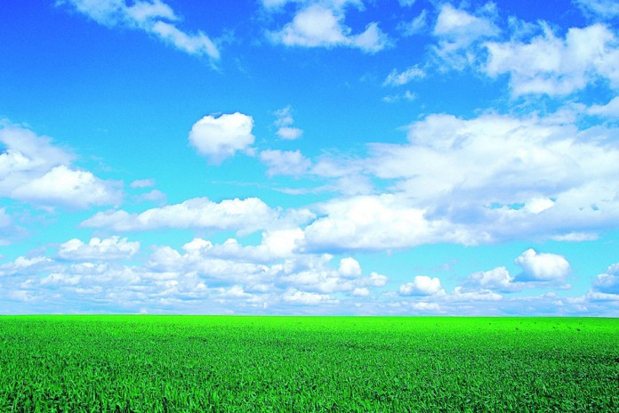 farmland and sky