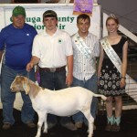 Devon Kitko's 130-pound grand champion market goat sold for $11 a pound to Ed Ward.