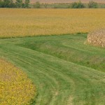 corn soybeans waterway conservation