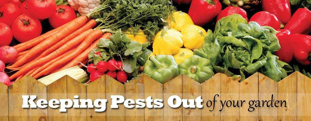 How To Keep Pests Out Of Your Garden Farm And Dairy