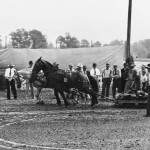 (Submitted by Bill T. McKarns)