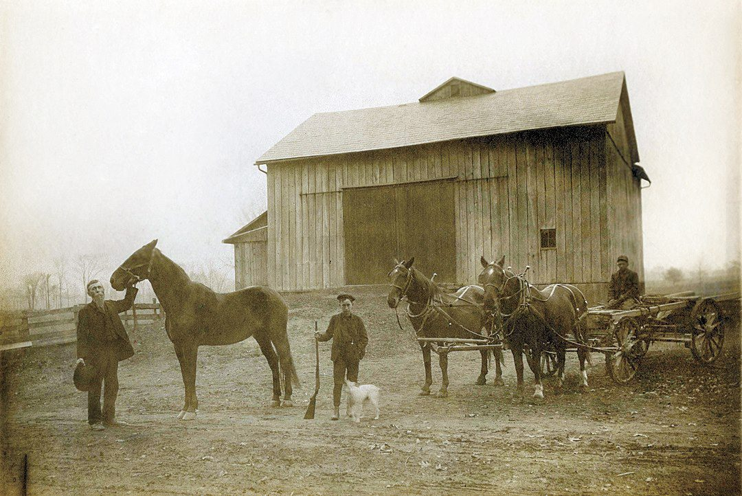 Shively Farm Farm And Dairy