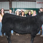 Jacob Smith won showman of showmen honors after topping the senior steer showmanship class.
