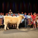 Grand Champion Market Beef Exhibited by: Gerrett Davison, Madison County