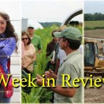 week in review August 16