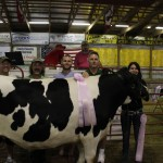 Paris and Washington Insurance, Ramsey Hoof Trimming, and Village Farmhouse bought Tatianna Varner's 1,499-pound reserve champion dairy steer for $4.50 a pound. Pictured from left are Chris Palmer of Village Farmhouse, Joe Ramsey of Ramsey Hoof Trimming, Hunter Palmer and Kelly Palmer of Paris and Washington Insurance, and Tatiana Varner.