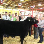 Sara Klem's 1,278-pound reserve champion market beef steer sold to Paris and Washington Insurance, Enviroscapes, Biery Cheese, Kreighbaum-Sanders FH, Kiko Meats, Umbarger Feeds - Cliff Linder, Klehm Cattle Company, and George and Becky Kiko for $12.50 a pound. Pictured with Sara Klem are Cliff Linder, Victoria Mauer, Ben Biery, Kelly Palmer, Anna Pugh, Todd Pugh, Darrell Klehm, and Ron Kiko.