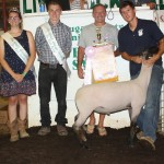 Tyler Rendlesham sold his 136-pound reserve champion lamb for $5.50 a pound  to the NAPA stores in Chagrin Falls and Middlefield, represented by Pete Sugarman.