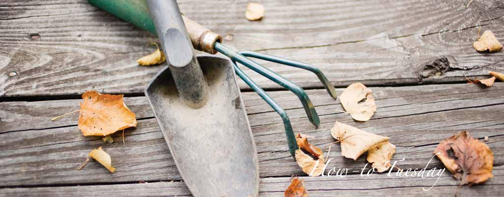 How To Prepare Garden Tools For Winter Farm And Dairy