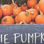 pie pumpkins in crate