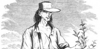 Johnny Appleseed drawing
