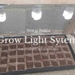 grow light system for starting seeds indoors