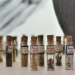 seeds in vials