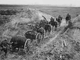 World War I horse-drawn artillery