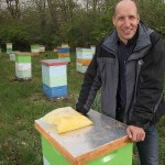 Honeybees and Purdue research