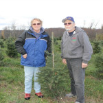 Moore's Tree Farm