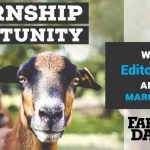 Farm and Dairy internship