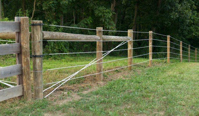 fencing on farm